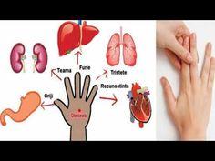 Fiecare deget este conectat cu 2 organe: metode japoneze pentru vindecare in doar 5 minute - YouTube Maine, Youtube, Cards, Reflexology, Youtubers, Maps