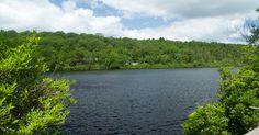 NJ Hiking - Bearfort Ridge to Surprise Lake – Hemlock Forest and Ridge Views