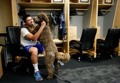 Injured pitcher Matt Moore gets cheered up by his goldendoodle Griffin as he packs up his gear in the Rays clubhouse.