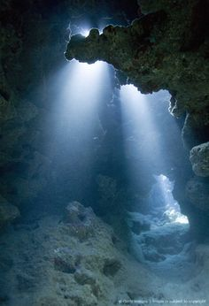 Caribbean Sea, Cayman Islands, Grand Cayman Island, rays of light shining on coral reef underwater