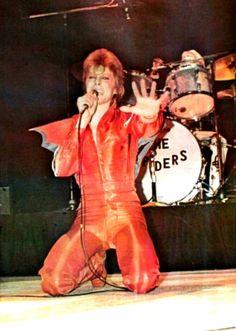 "laughingspamfritter: ""David Bowie, Long Beach Arena, Los Angeles, California, 10…"