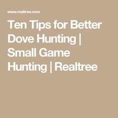 Ten Tips for Better Dove Hunting | Small Game Hunting | Realtree