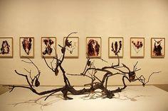 Javier Pérez: VIDA | until 30.07.16 | showing Mario Mauroner Contemporary Art | click the link in our bio for more.  #firstlookart #galleriesnow #dontmissthis #closinginjuly #mariomauroner #mariomauronercontemporaryart #vienna #artinvienna #viennaonly #gallery #installation #exhibition #modernart #modern #contemporaryart #sculpture #art #conceptual #painting #javierperez #vida #seemoreart #dontmissout