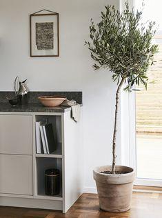 Nordiska Kök frame kitchen 15.jpg