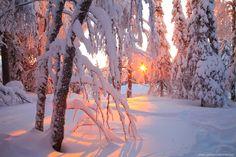 ***Winter Sunset (Finland) by Anton Petrus❄️