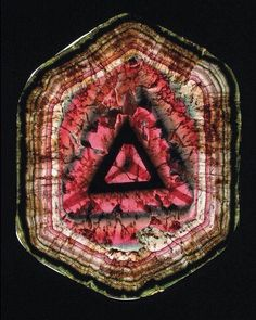 Slice of Tourmaline (Liddicoatite) | #Geology #GeologyPage #Mineral  Geology Page www.geologypage.com