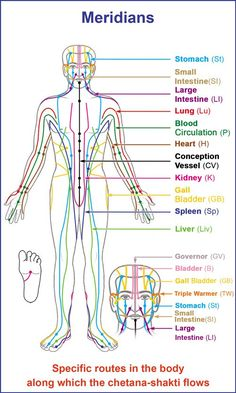 What Is Acupressure A. Sentient body energy flow What is Chetana-shakti? Chetana-shakti (Sentient energy) is also known as Prana-shakti (Energy that provide. Meridian Acupuncture, Acupuncture Points, Acupressure Points, Meridian Massage, Acupressure Therapy, Acupressure Treatment, Yin Yoga, Meridian Energy, Meridian Points