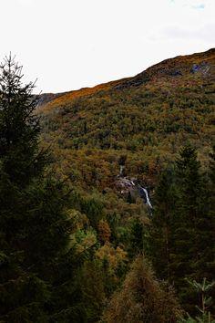 https://flic.kr/p/L6qMRd | Hidden waterfall | Autumn is here