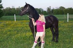 Amazing Imported Fhana registered Friesian mare for sale