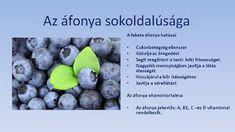 Életmód cikkek : Zöldség és gyümölcsök hatásai