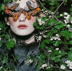 Open any fashion magazine, and you'll find a page with butterflies used in the photography. Description from bitrebels.com. I searched for this on bing.com/images