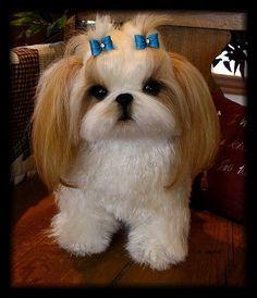 SHIH TZU vie comme coutume fait Soft Sculpture de votre chien