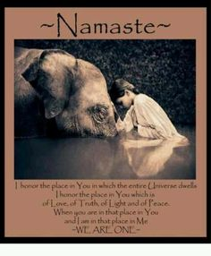Namaste  http://www.3elephants.in http://www.facebook.com/3elephants.cheraibeach http://www.les3elephants.wordpress.com
