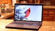 System76 Ubuntu powered Kudu Professional 17.3 inches of cozy laptop! https://www.system76.com/laptops/model/kudp1