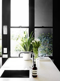 Kitchen details. 'We have a lot of indoor plants as they are cheaper and last longer than flowers!' says Claire. 'With no outlook onto a gar...