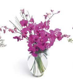 For retaining color of the flower they should be dried in dark airy places.
