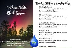Northern Lights Black Spruce Diffuser Combos