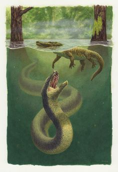 Lurkers of the deep. Titanoboa by Esther van Hulsen Prehistoric Wildlife, Prehistoric Dinosaurs, Prehistoric World, Dinosaur Fossils, Dinosaur Art, Prehistoric Creatures, Raptor Dinosaur, The Animals, Fantasy Creatures