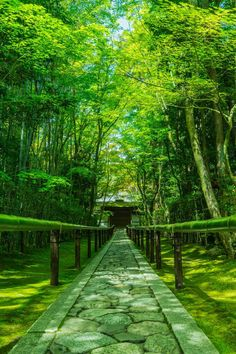 the approach to Koto-in at Daitoku-ji temple, Kyoto, Japan Japan Nature, Places Around The World, Around The Worlds, Beautiful World, Beautiful Places, Japon Tokyo, Japanese Landscape, Photos Voyages, Japan Travel