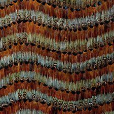 5003860 Blackstone Mineral Schumacher Wallpaper you can purchase this pattern online for less plus samples available. Thanks for shopping Mahones Wallpaper Shop for pattern Remember Mahones Wallpaper Shop only sells hand materials straight from Schumacher Interior Design Work, Made To Measure Curtains, Paint Samples, Pattern Names, Paint Shop, Schumacher, Drapery Fabric, Textile Patterns, Textiles