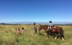 Zimbabwe, Travel With Kids, Family Travel, Safari, South Africa, Horses, Animals, Children In Africa, Horse