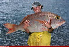 Catch a really big fish