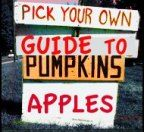 Fall Harvest Festivals, Pumpkin Patches, Corn Mazes and Hayrides Right Here in New York City 2012 - Pumpkin Picking and Fall Festivals for NYC Kids and Families | Mommy Poppins - Things to Do in NYC with Kids