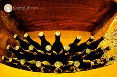 Wine bottles begging for a pour