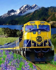 Alaska Railroad... wonderful site seeing train ride from Anchorage to Fairbanks! It was a great trip!