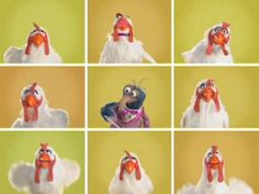 """The Blue Danube Waltz"" as conducted by The Great Gonzo and featuring the lovely Camilla  (c) 2009 The Muppets Studio, LLC"