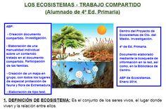 LOS ECOSISTEMAS (Aprendizaje Basado en Proyecto). Proyecto que combina la expresión artística con la investigación.