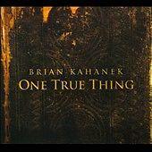 One True Thing [Digipak] by Brian Kahanek (CD, Jan-2010, Sidewindermusic)