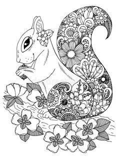 Vector illustration zentangl, squirrel with flowers. Doodle drawing. Coloring page Anti stress for adults and children stock illustration