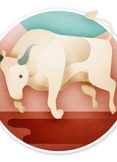 Stier - Typologie: Im Allgemeinen
