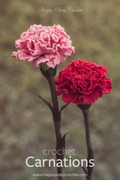 Crochet Carnations by Happy Patty Crochet // Pattern inside