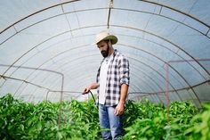 Young farmer protecting his plants with chemicals photo by on Envato Elements Young Farmers, Stock Photos, Landscape, Plants, Scenery, Plant, Corner Landscaping, Planets