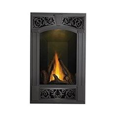 12 best fireplaces images gas fireplace gas fireplace inserts rh pinterest com