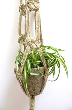 Image of Double Knot Macrame Plant Hanger                                                                                                                                                      Más