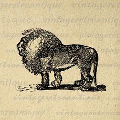 Digital Graphic Antique Lion Illustration by VintageRetroAntique