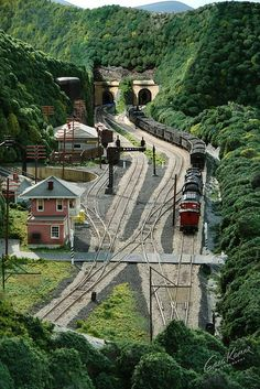 For some people, collecting toy trains isn't just another hobby or interest; The concept of collecting toy trains has been around for centuries. Nearly everyone has some type of connection to toy trains, whether it Escala Ho, Ho Train Layouts, Model Railway Track Plans, Railroad History, Hobby Trains, S Bahn, Train Pictures, Train Tracks, Model Trains