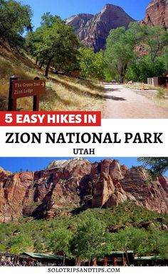 Enjoy 5 easy hikes in Utah. Zion National Park hikes for all ages, family friendly hikes, kid friendly hikes, solo friendly hikes. Explore one of the most popular national park in the United States - Zion National Park Utah is beautiful. Enjoy scenic drives, panoramic views, red rock canyons, wildlife, birds, hike to the Narrows in Zion, and enjoy the outdoors. Save this for your Utah road trip bucket list! #zion #zionnationalpark #utahnationalparks #zionutah #utahhikes #besthikes… Most Visited National Parks, National Parks Usa, Zion National Park, Beautiful Places To Travel, Cool Places To Visit, Summer Vacation Spots, Vacation Ideas, Hiking The Narrows, Zion Utah