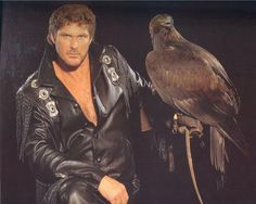 The Hoff.  He's not messin' around.