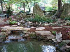 Robert Frost Needed Better Neighbors | Garden Rant