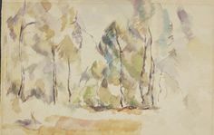 A Forest of Standing Timber Verso: Rocks and Trees - 1880 1885 - Paul Cézanne, French, 1839 - 1906