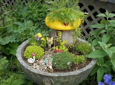 fairy garden in a broken or cracked fountain an idea worth saving, flowers, gardening, succulents, Pat Jackson made a fairy garden in hers complete with toadstool