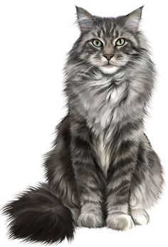 Illustrations pets by Lucia Guarnotta, via Behance - . - Cats -Illustrations pets by Lucia Guarnotta, via Behance - . - Cats -Illustrations pets by Lucia Guarnotta. Dibujos Cute, Warrior Cats, Cat Drawing, Cat Tattoo, Beautiful Cats, Animal Drawings, Pet Portraits, Cat Art, Illustration Art