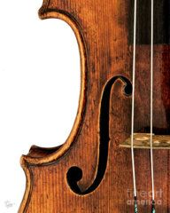 Violin Photograph - Left F by Endre Balogh