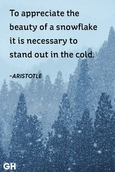 12 best quotes about snow - snowy winter quotes & sayings Life Quotes Love, Great Quotes, Me Quotes, Inspirational Quotes, Motivational, Winter Chic, Winter Day, Snow Quotes, Winter Quotes