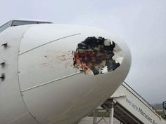 LONDON — A bird strike damaged the nose of a passenger plane as it was landing at Heathrow Airport last Friday. The EgyptAir Boeing was carrying more. Aviation Blog, Aviation Art, Bird Strike, Gaping Hole, Old Planes, International Airlines, Air Charter, Airline Travel, Heathrow Airport