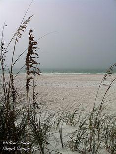 René Marie Photography | Beach Cottage Life | https://www.facebook.com/BeachCottageLifePhotography